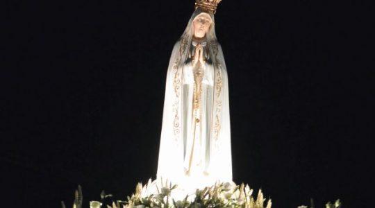 Toewijding Nederlandse bisdommen aan het Onbevlekte Hart van Maria