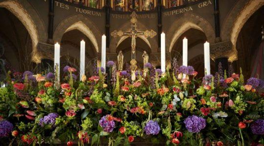 Kathedrale basiliek Sint Bavo in Haarlem in bloei gezet met meer dan 50.000 bloemen