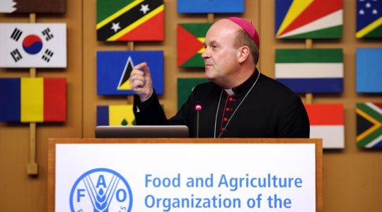Bisschop Van den Hende spreekt bij FAO (Verenigde Naties) in Rome