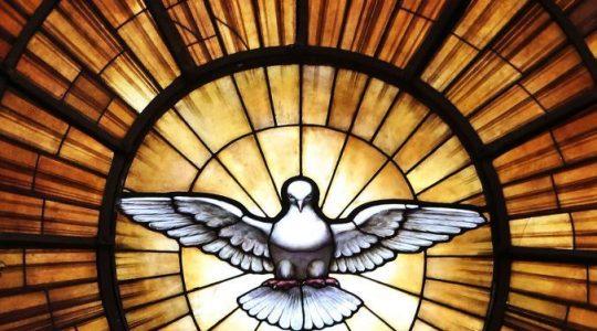 'Waarachtige voortgang van de oecumene verbinden met het werk van de heilige Geest'
