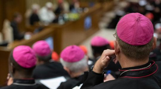 Paus Franciscus schrijft brief voor de Amazone: 'Querida Amazonia'